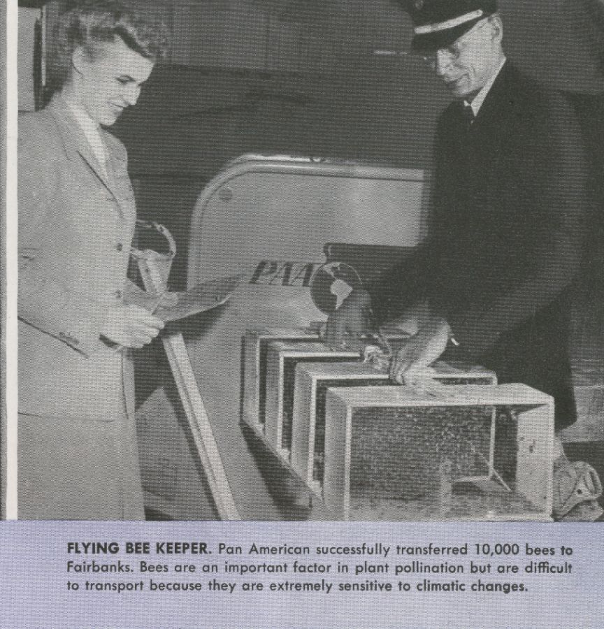 1944 Passenger Service review shipment of bees to Alaska